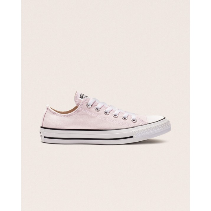 Womens Converse Chuck Taylor All Star Shoes Pink 163358F